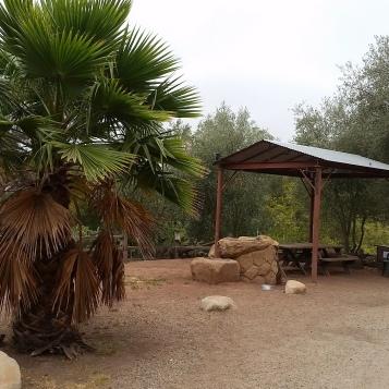 Picnic Area #2