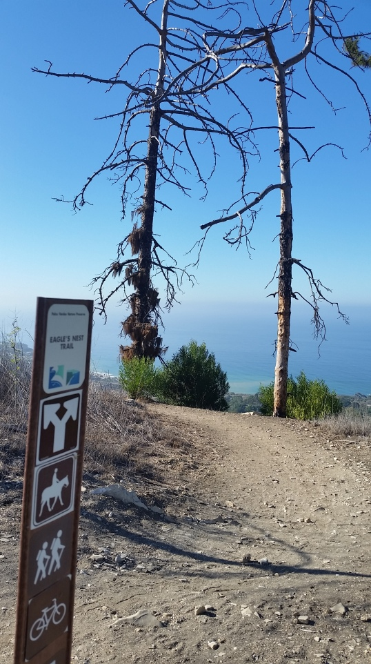 Eagle's Nest Trail - go to the right