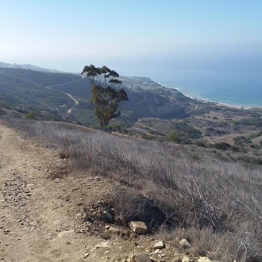 Eagle's Nest Trail