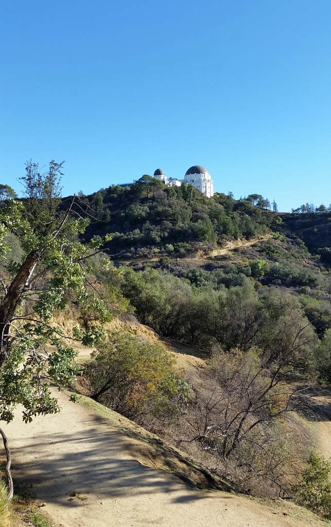 Beginning of the hike - Griffith Observatory ahead on the top of hill