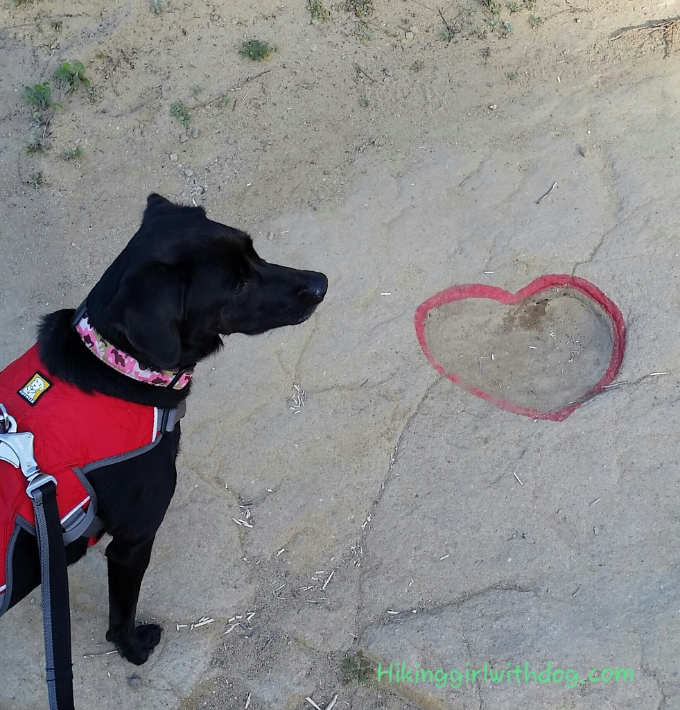 Found a heart shape imprint on the trail. Someone traced the line with something red (not sure what)
