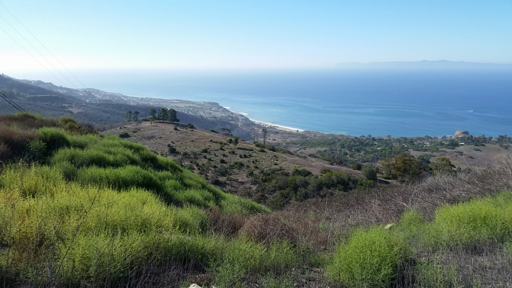 Rolling hills of Portuguese Bend Reserve in Palos Verdes