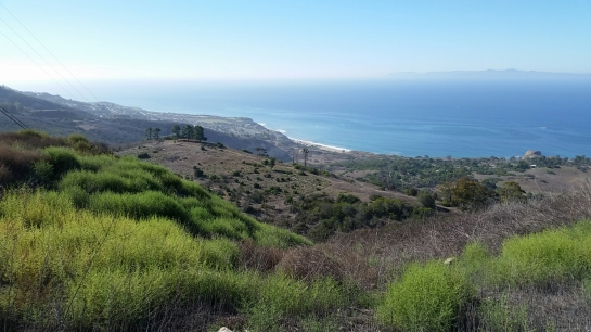 Rolling hills of Portuguese Bend Reserve in Palos Verdes