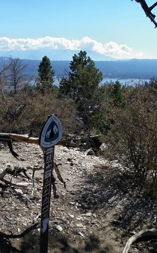 Cougar Crest meets Pacific Crest Trail (PCT)