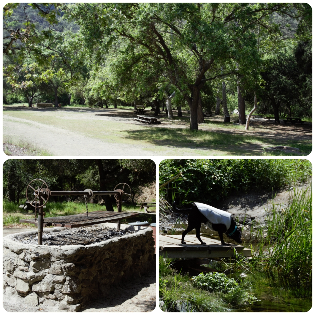 paradise_falls_picnic_area