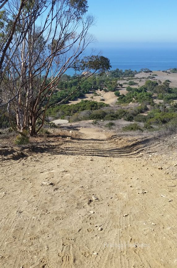 Looking down on Water Tank Trail