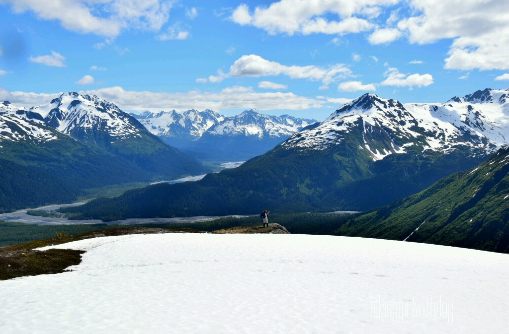exit_glacier_trail_1