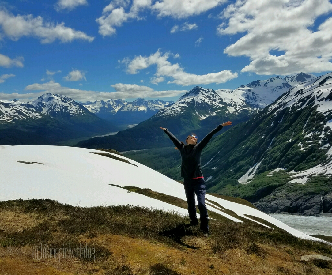harding_icefield_trail_11