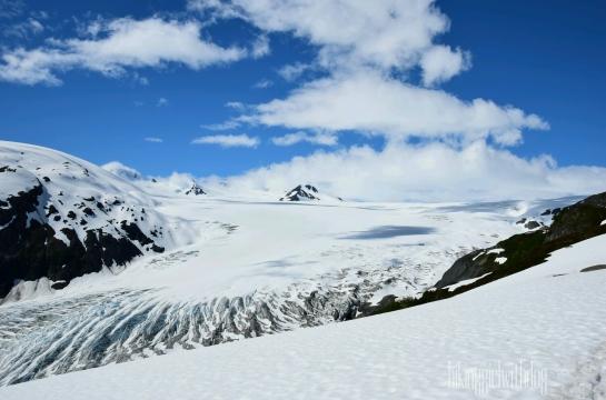 exit_glacier_trail_7