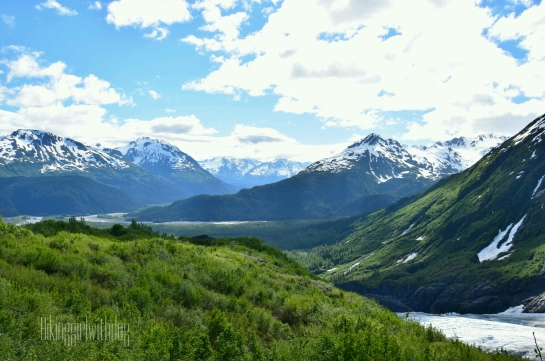 exit_glacier_trail_8