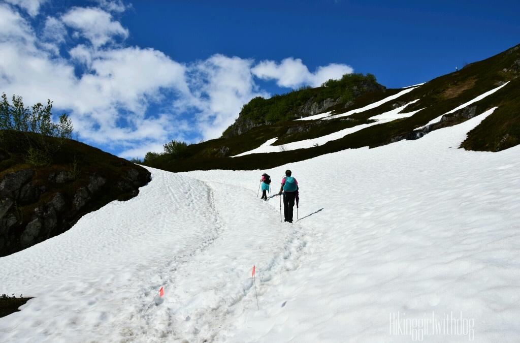 exit_glacier_trail_10