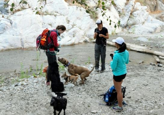 pack_hike
