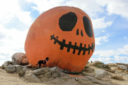 pumpkin_rock