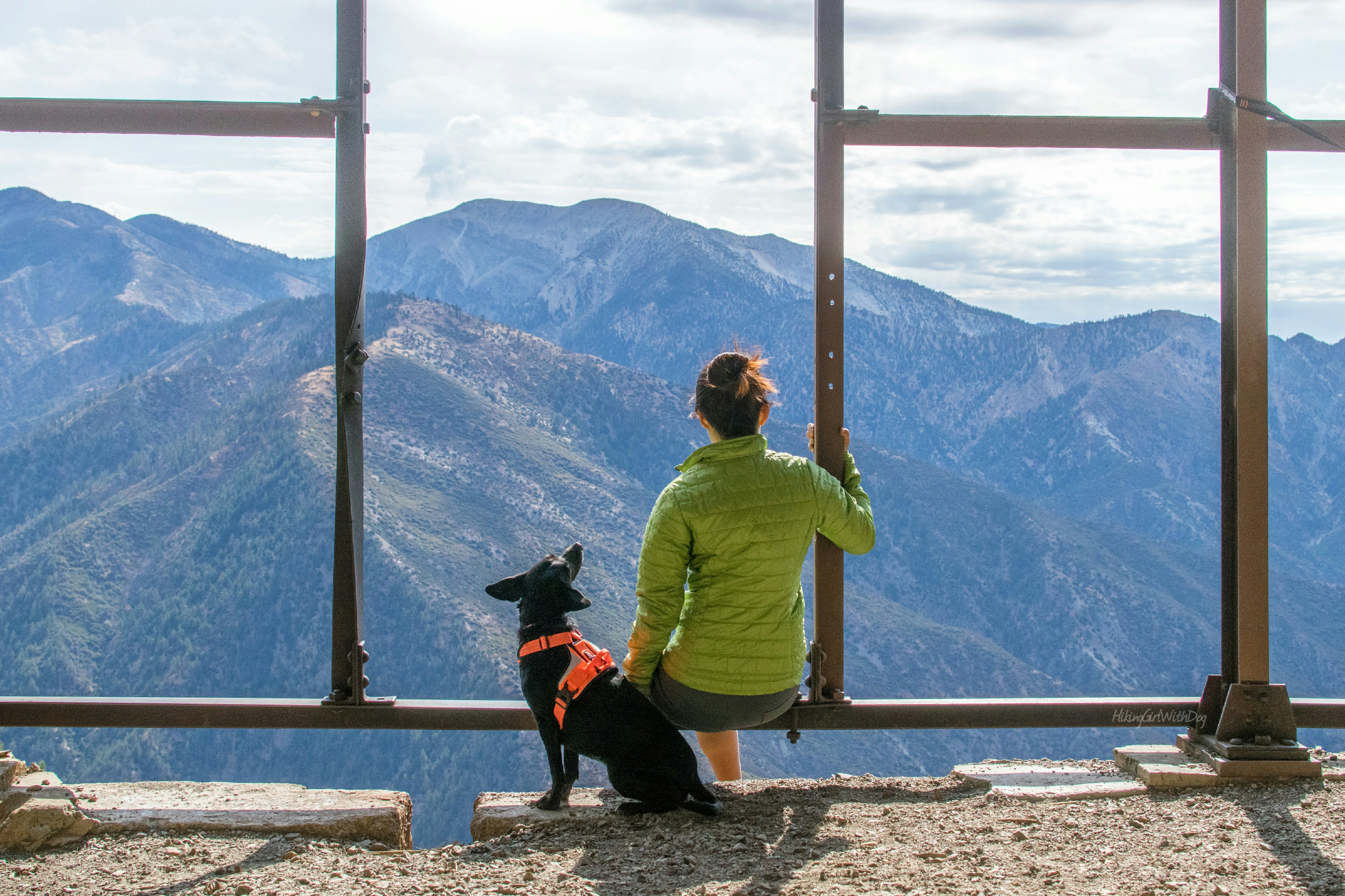 Best dog-friendly hikes in Southern California