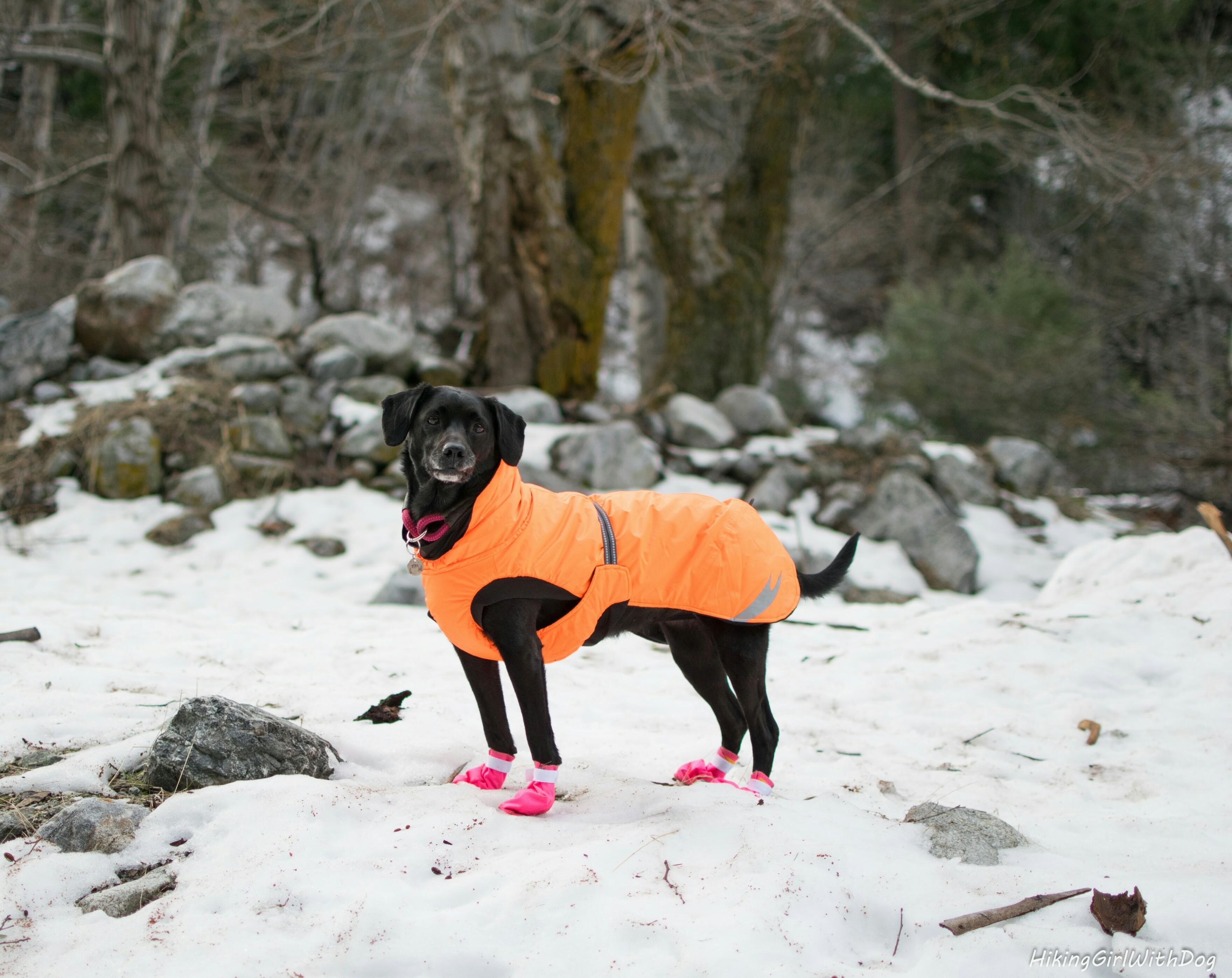 snow_hike_1