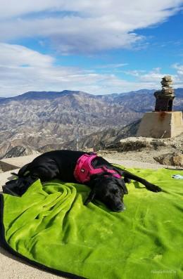 Product Review: Alcott Explorer OutdoorBlanket