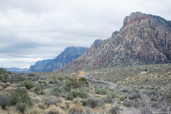 nv_red_rock_canyon-12
