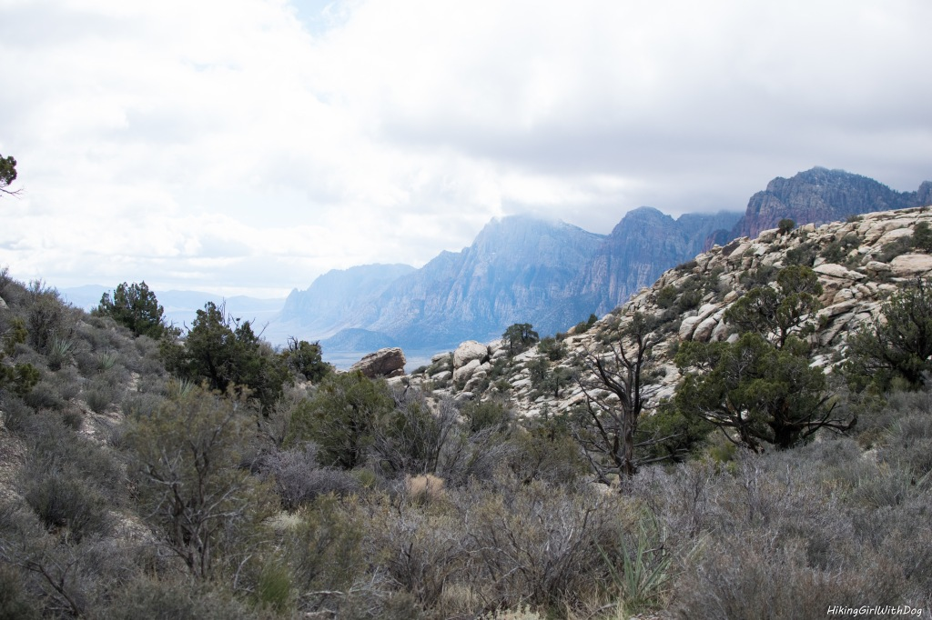 nv_red_rock_canyon-7