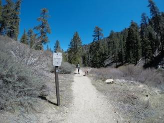 Cooper Canyon Falls Hike