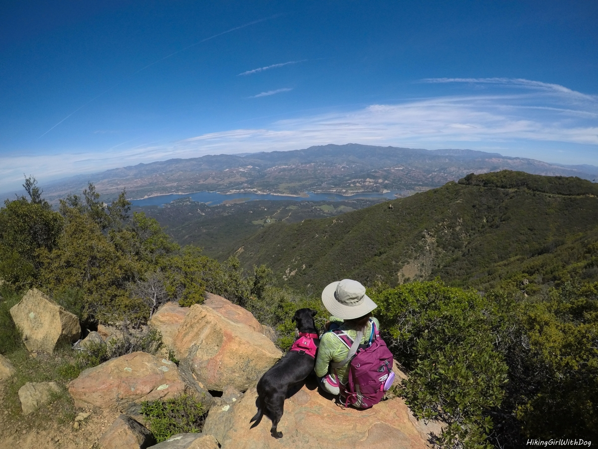 Dog Friendly Southern California Hiking