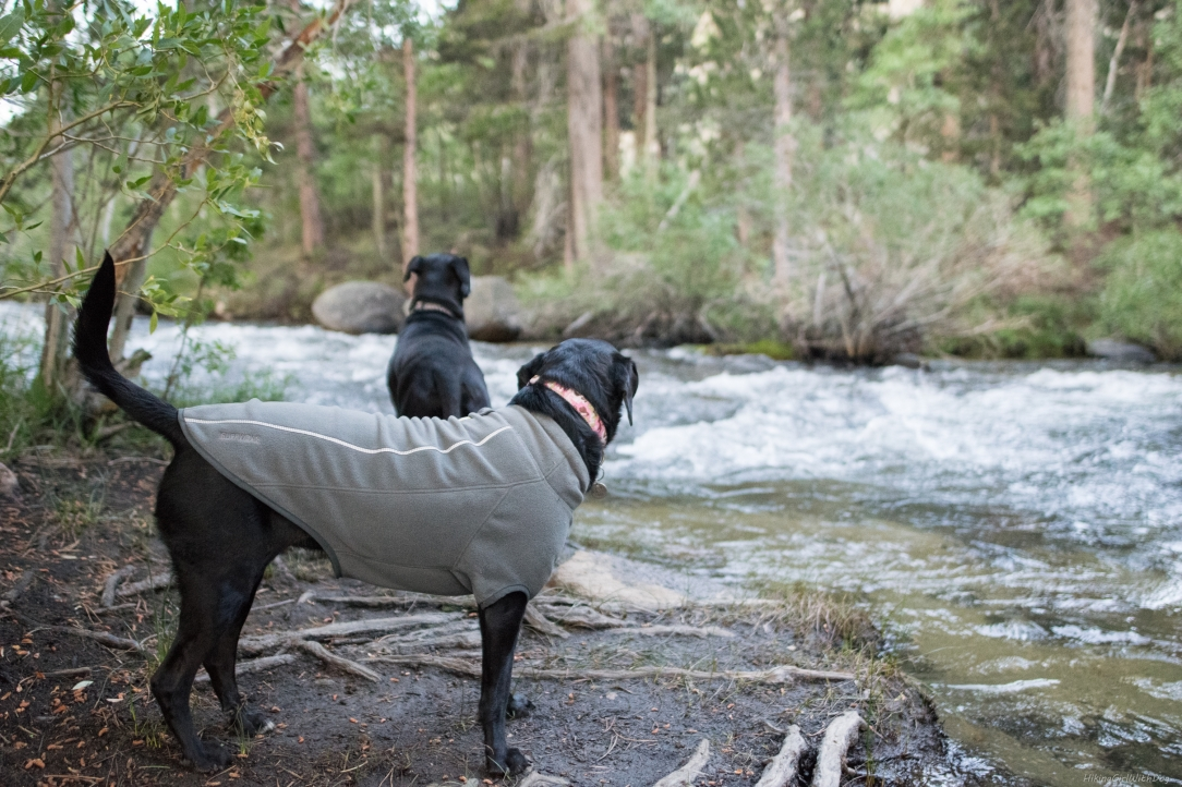 camping-12214409623.jpg