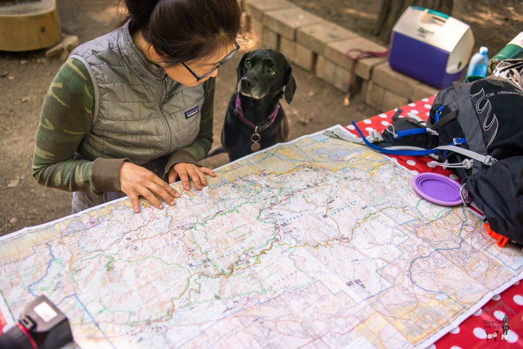Solo Camping and Hiking With Dog