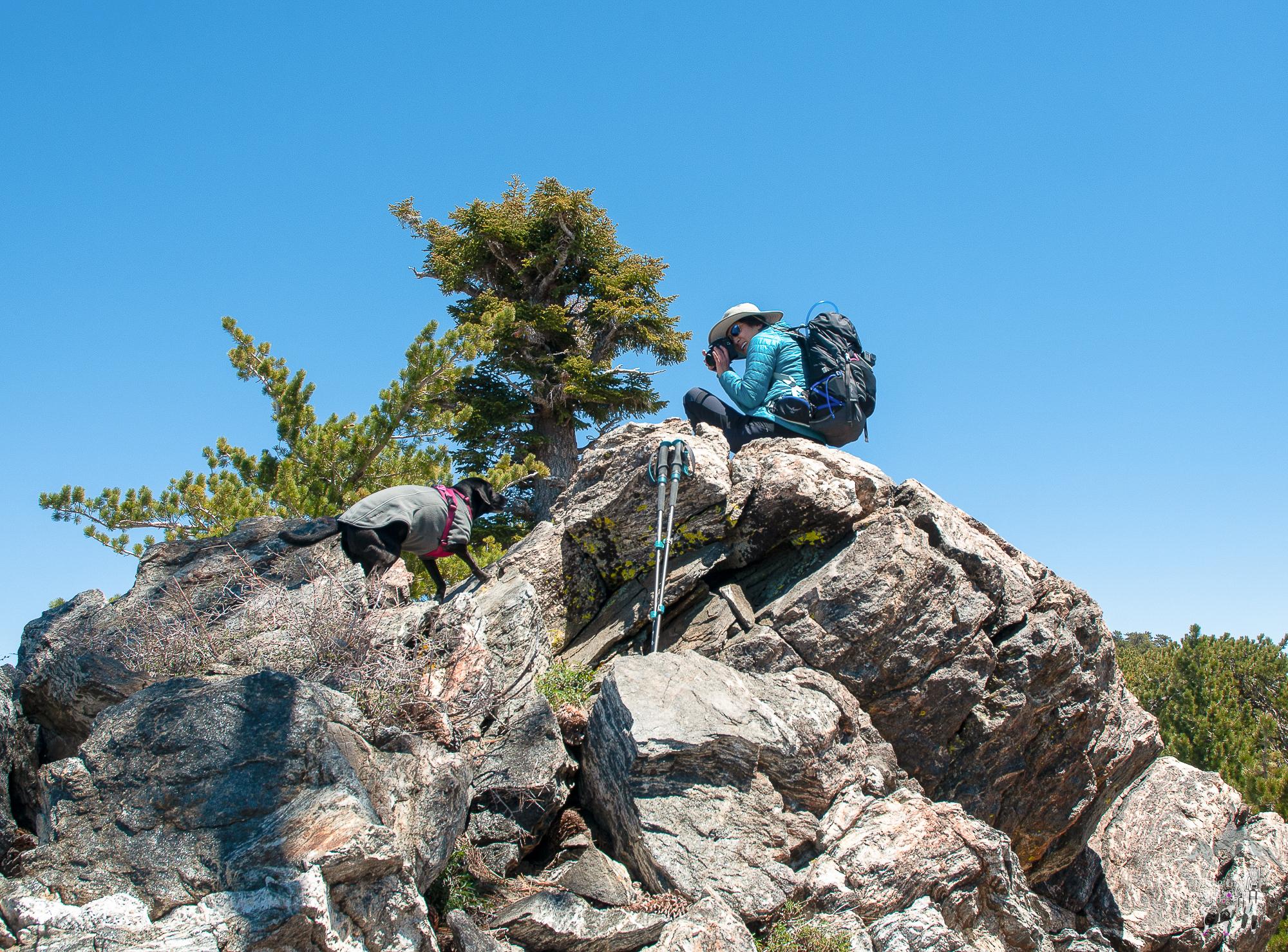 trekking_poles-3