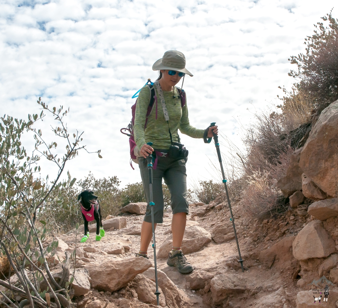 benefits of trekking poles