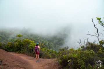 Awaawapuhi Trail