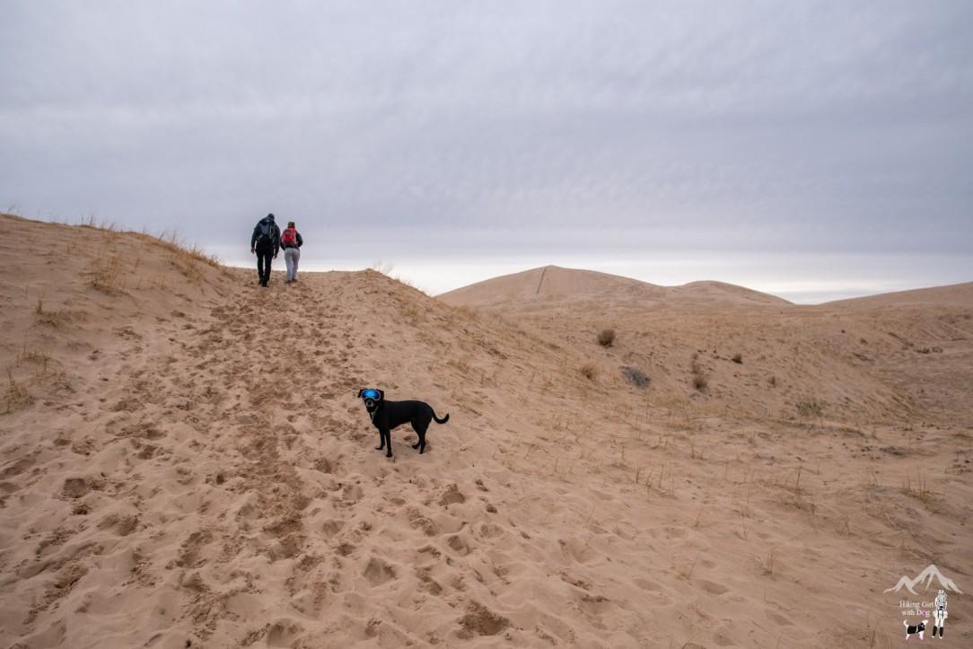 kelso_dunes-15.jpg