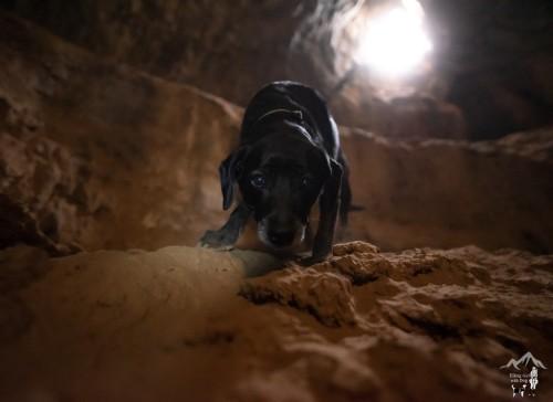 Mojave Desert Lava Tube