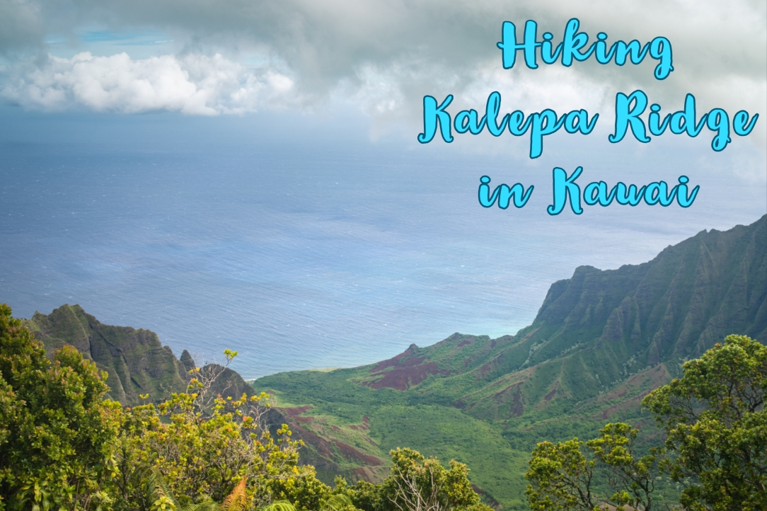 Kalepa Ridge