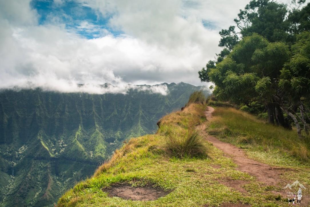 kalepa_ridge-11.jpg