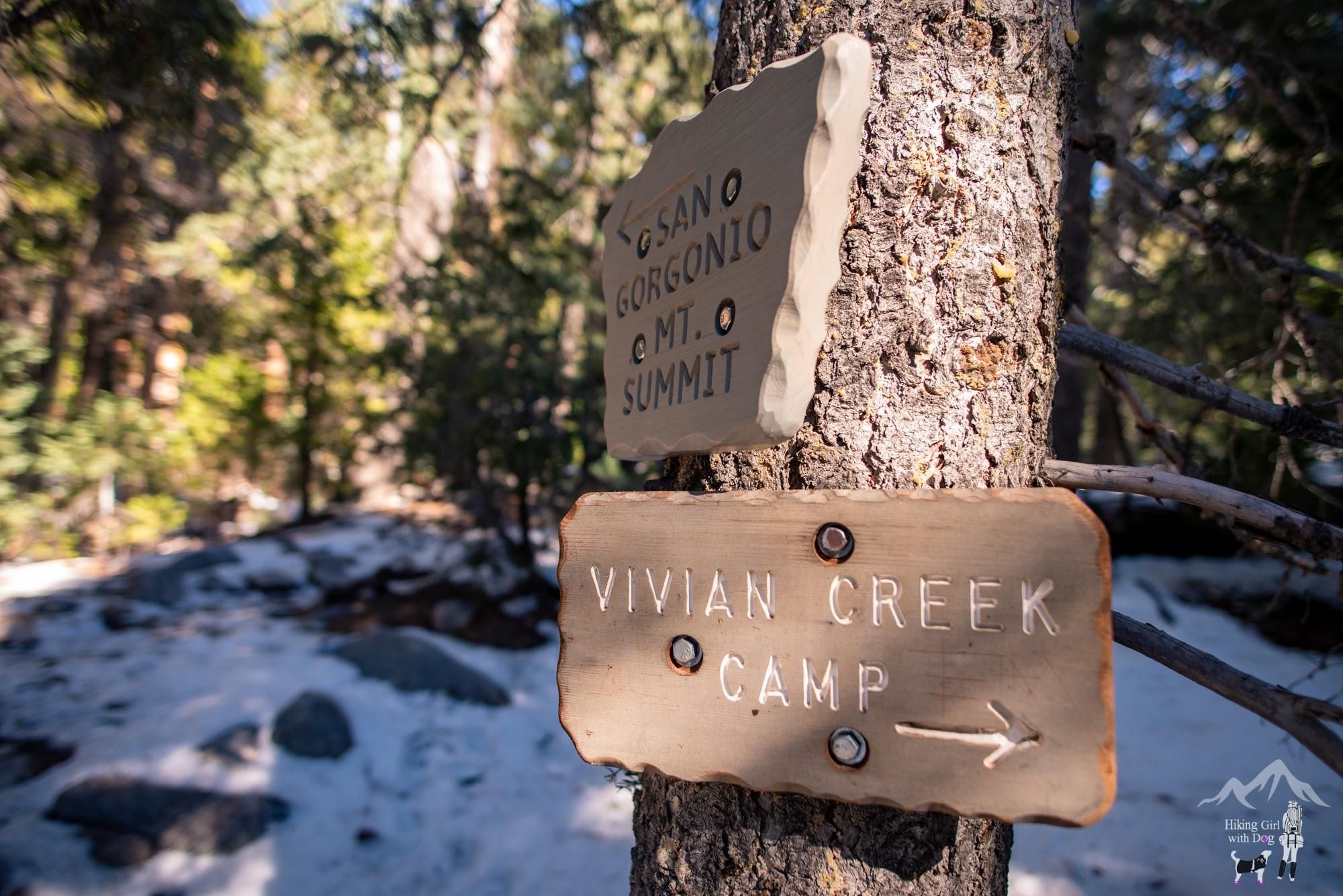 vivian_creek-22.jpg