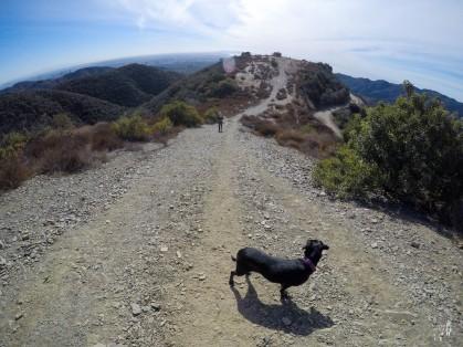 Mandeville Trail
