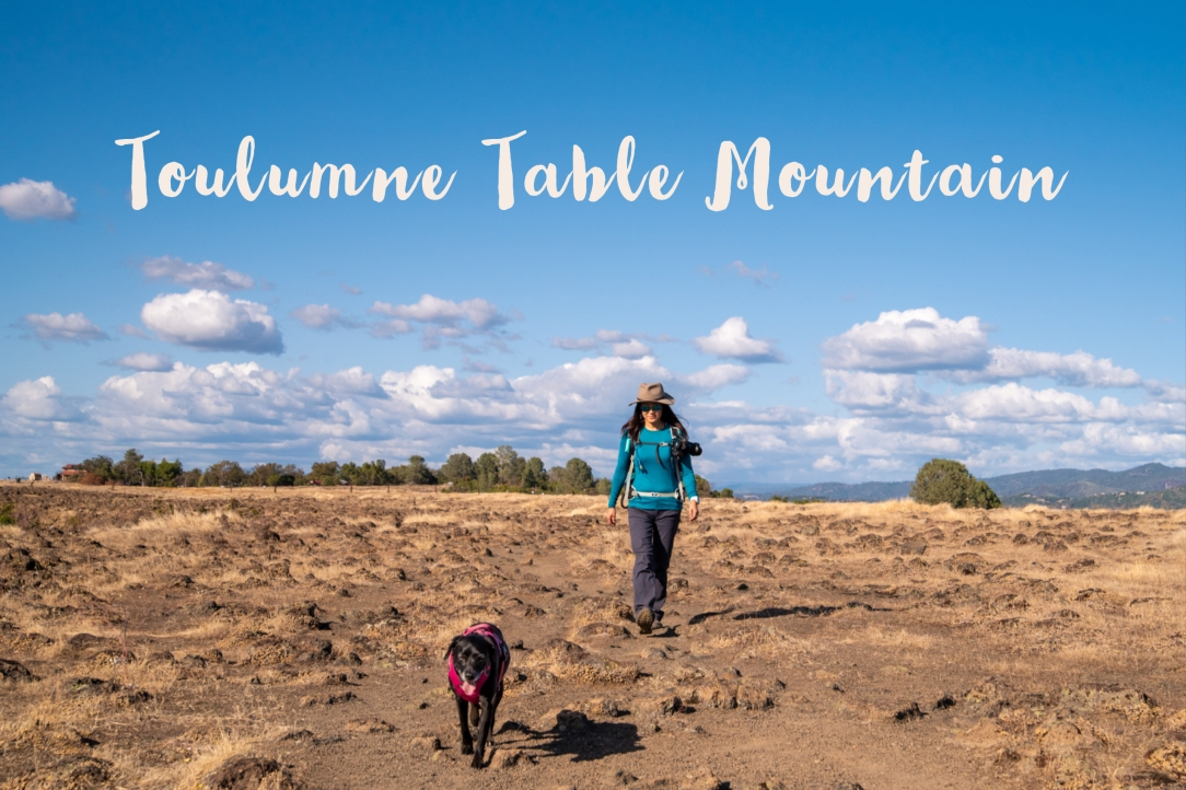 Toulumne Table Mountain